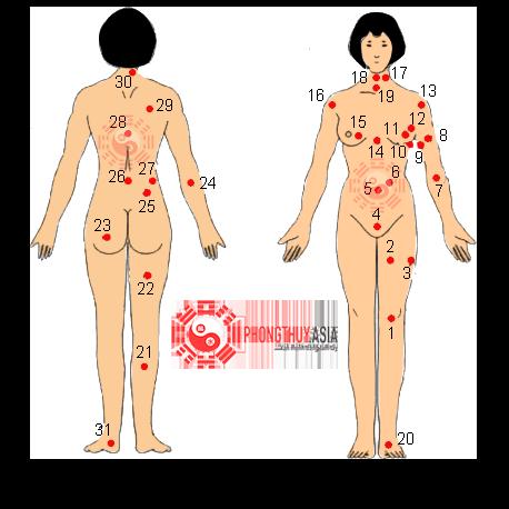 Vị trí nốt ruồi trên cơ thể phụ nữ